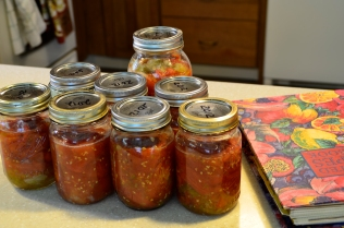 Tomatoes for Winter Soups