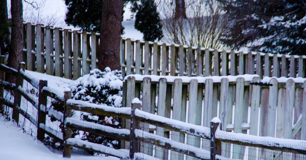 Snow Fences