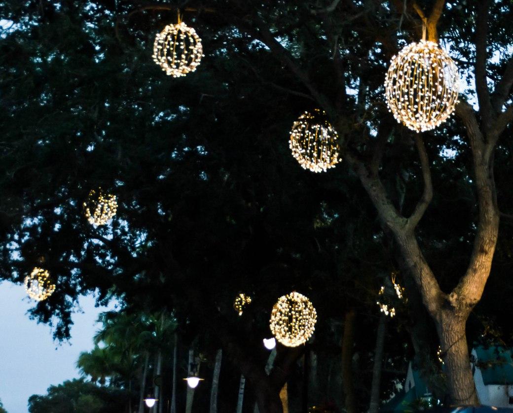 5th lights 026-2