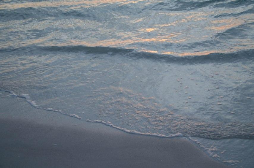 Abalone Surf