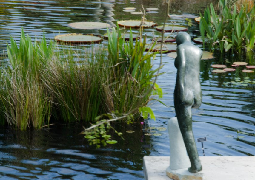Botanical Gardens 106
