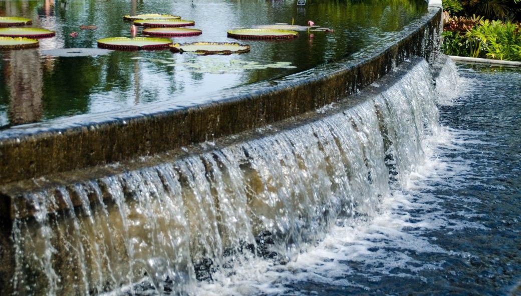 Botanical Gardens 111