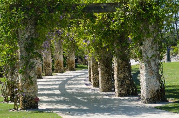 botanical gardens 164