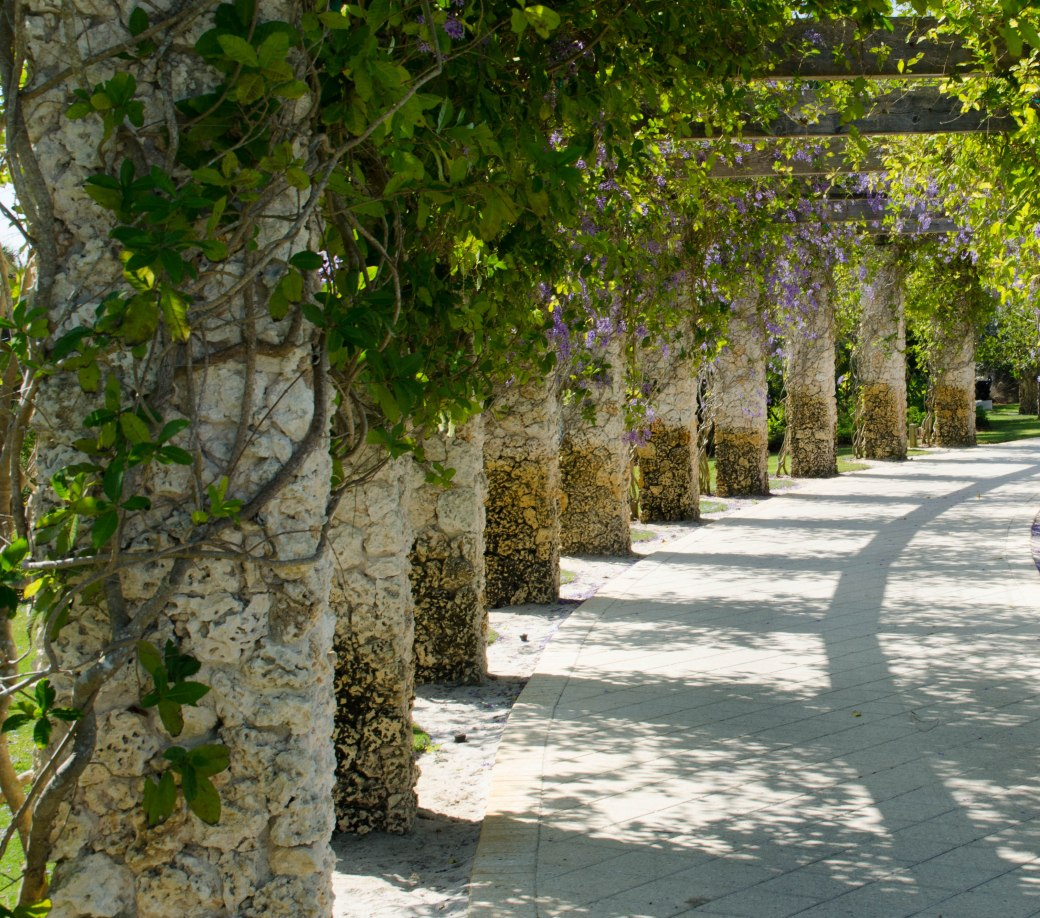 botanical gardens 168
