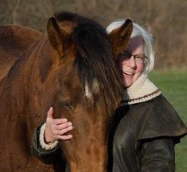 horse 124