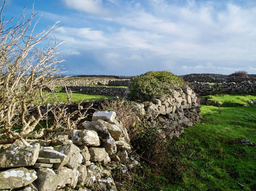 Irish dry stone fence.