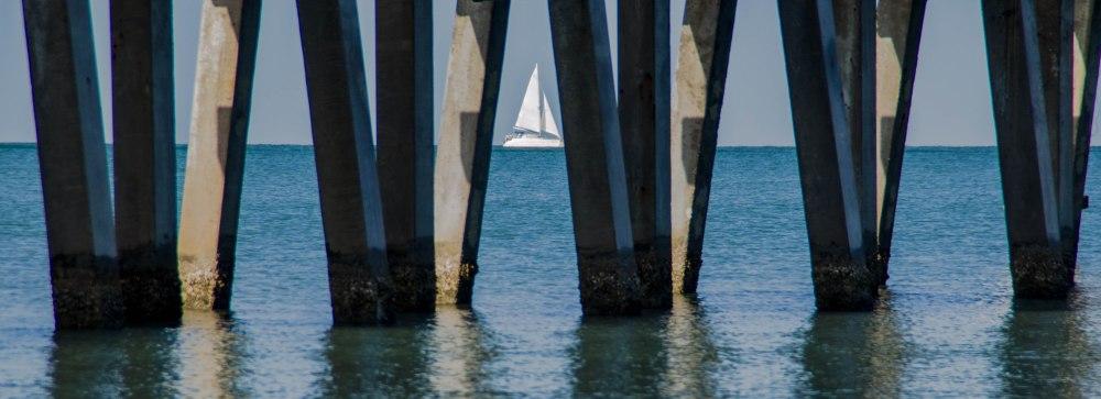 Under Naple's Pier in Florida.