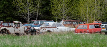 "Outdoor ""museum"" of family cars."