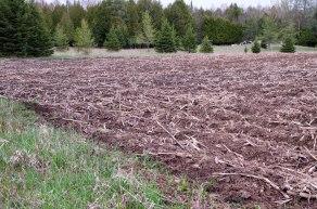 Newly plowed field.