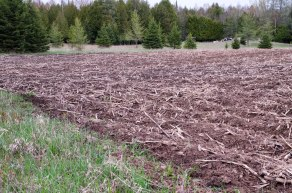 Newly plowed field.
