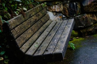 Cascade Mountain Bench