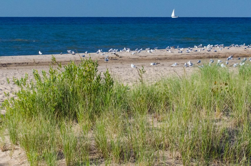 morning beach 069