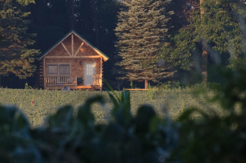 Little cabin on the edge of a soy field. Nice title for a novel?