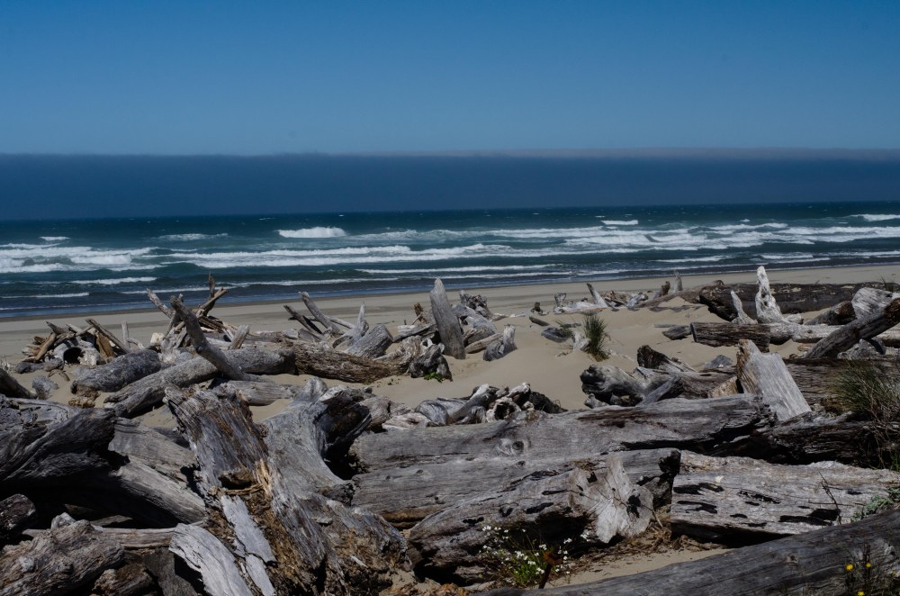 Oregon 022