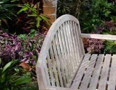 botanical garden 248