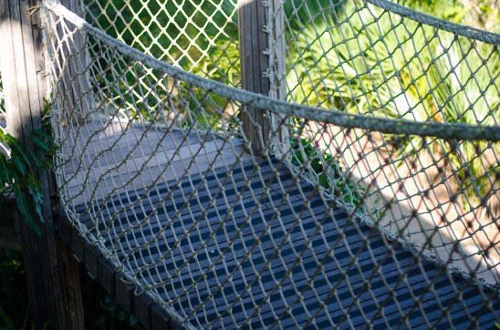 Rope bridges that take courage to cross.