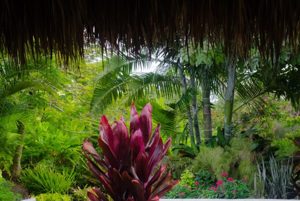 botanical gardens 165