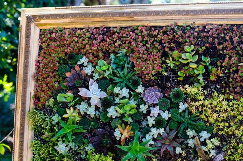 botanical garden 049