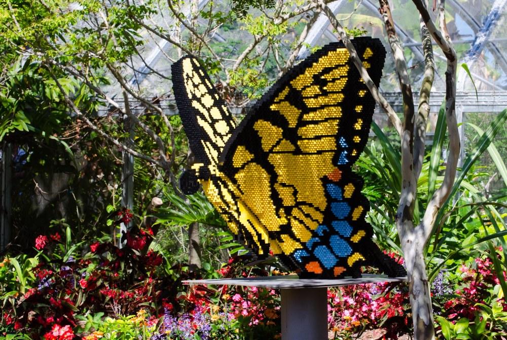 botanical garden 123