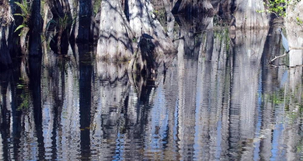Reflection of Dark & Light