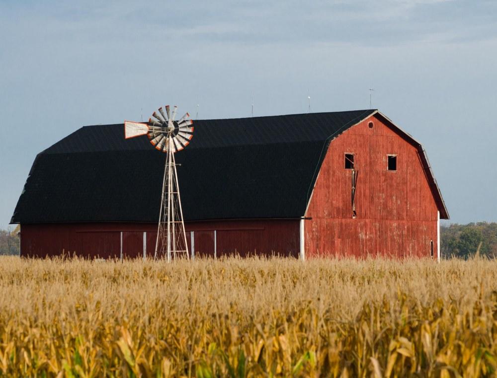 Michigan Barn, Fall 2013