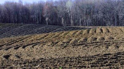 Newly plowed field soaking up the sun's warmth, getting ready to receive spring seeds.