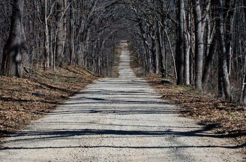 dirt road spring 153