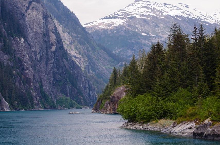glacier 653