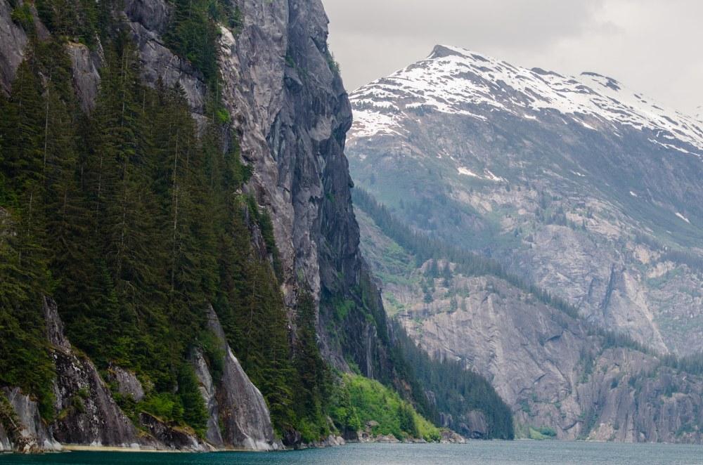glacier 677