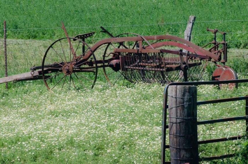 Amish 180
