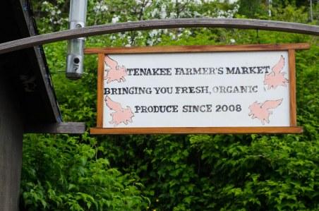 Tenakee Springs 277