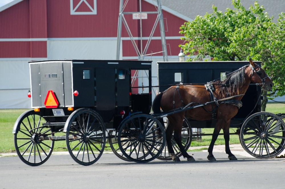 Amish 039