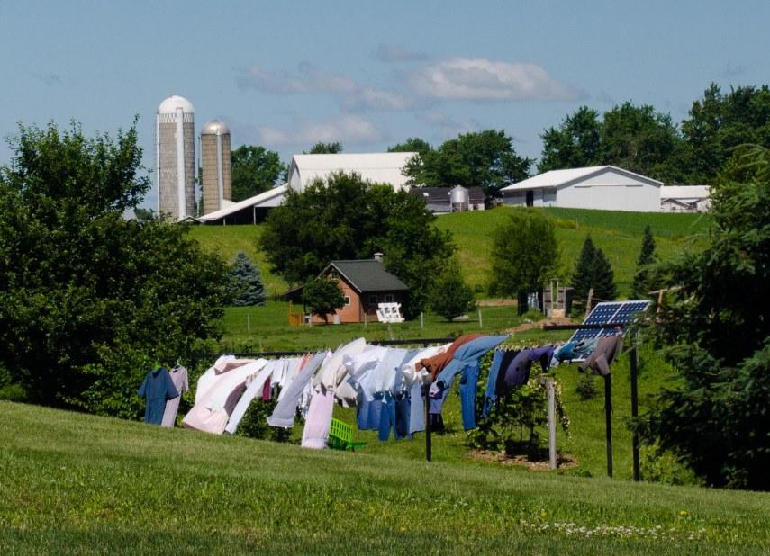 Amish 139