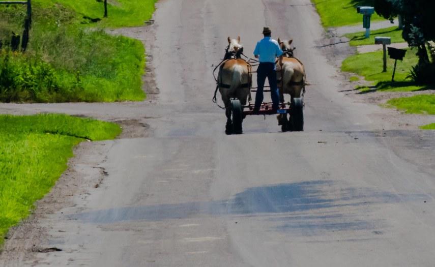 Amish 174
