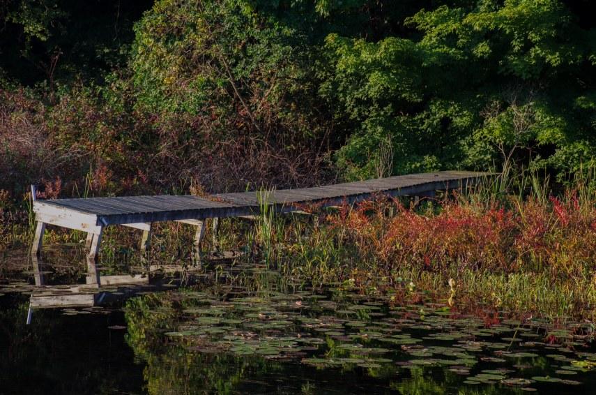 Concord pond 030-2
