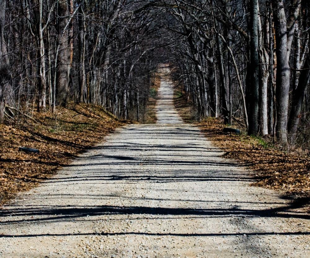 dirt road spring 153-2