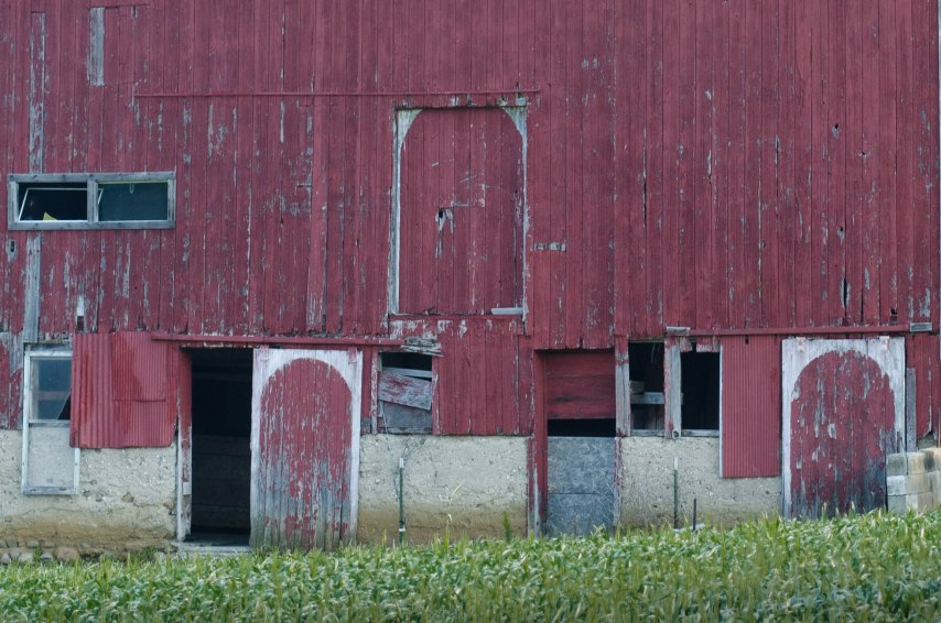 20150528-flowers and barns 052