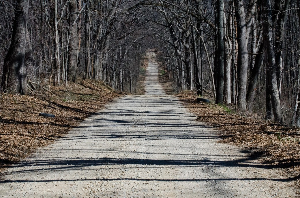 dirt-road-spring-153