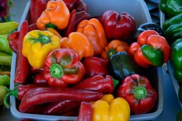 20120911-farmers market 007
